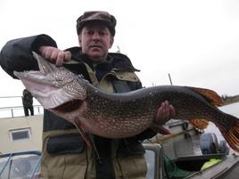 Щука - Трофеи - Рыболовная база Игрим - Северная Сосьва